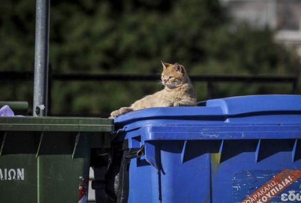 Έκπτωση στα τέλη θα έχουν οι δήμοι που ανακυκλώνουν σωστά