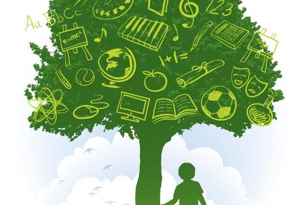 Η Περιβαλλοντική Εκπαίδευση στην καταπολέμηση της πλαστικής ρύπανσης